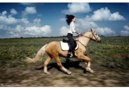 Верховая езда для одного