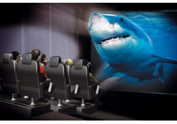 5D кинотеатр для компании до 5 человек