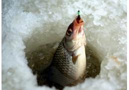 Рыбалка в сопровождении егеря и отдых на реке Кама