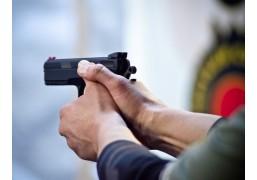 Мастер-класс по стрельбе из огнестрельного оружия (100 патронов)