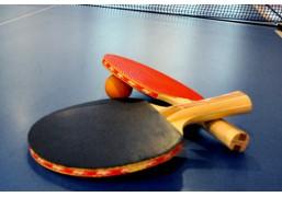 Настольный теннис для компании