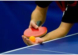 Индивидуальное занятие настольным теннисом