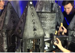 "Квест-игра ""Замок магии и волшебства"""