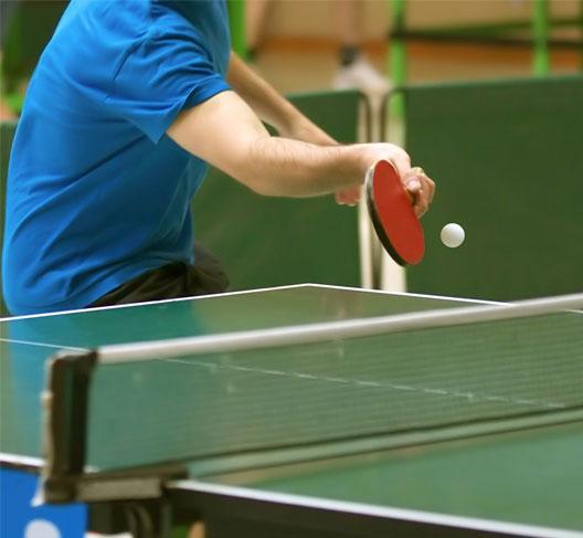скачать бесплатно игру пинг понг - фото 6