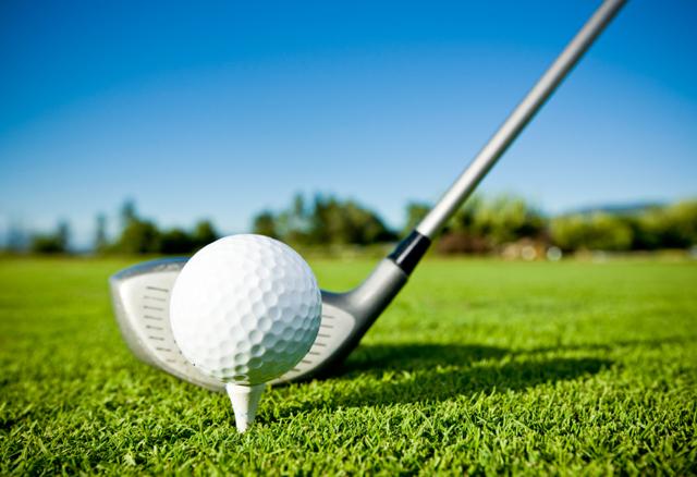 скачать торрент гольф с друзьями - фото 6